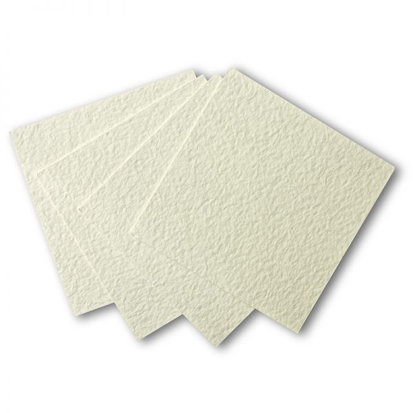 Plaques de filtration de marque PALL