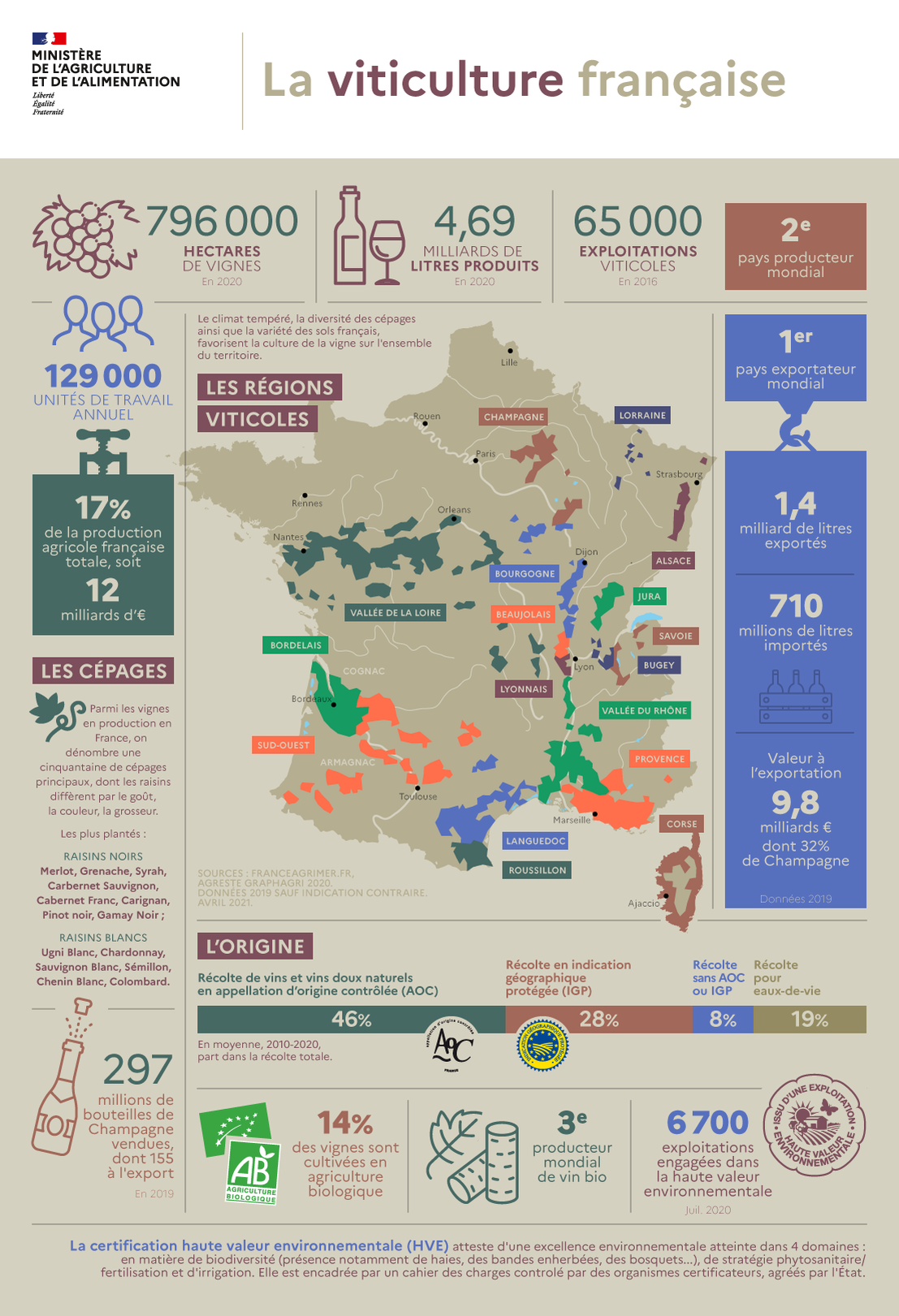infographie viticulture française